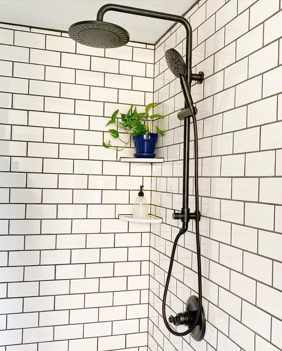 Image of how to have plants in the shower
